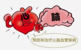 中国脑血管病一级预防指南2019发布!丨指南共识